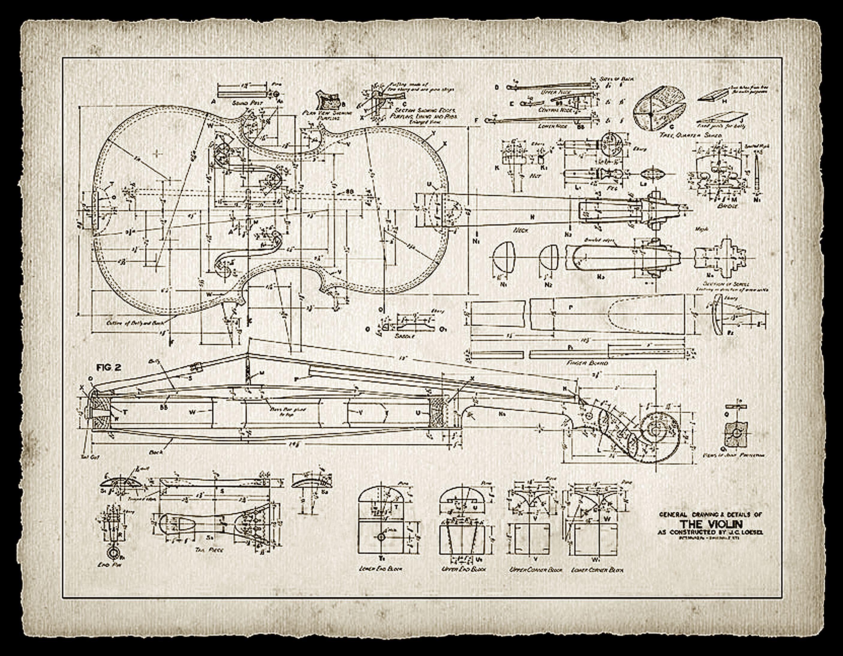 Guitar Wall Murals Print Of A 19th Century Violin Maker S Plans ά