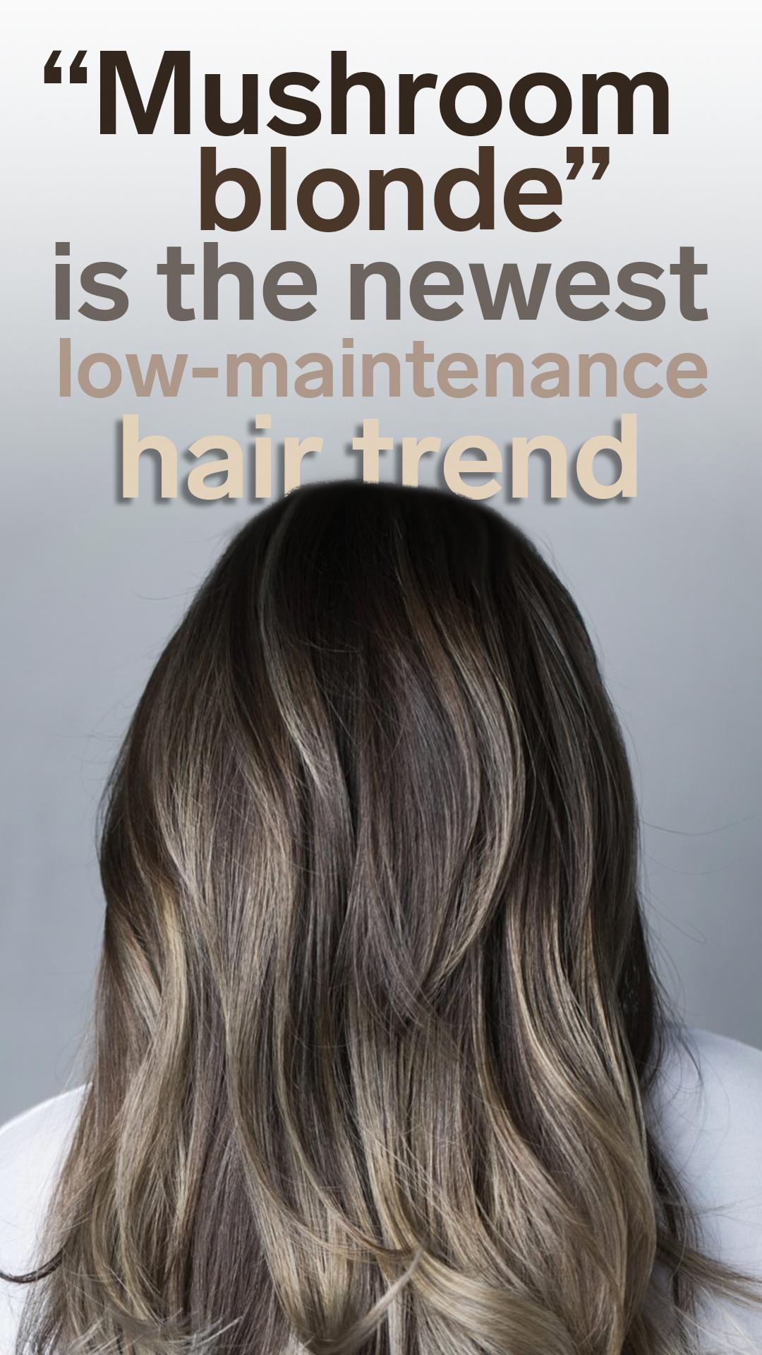 Brownhair In 2020 Low Maintenance Hair Brown Hair Trends Ash Brown Hair Color