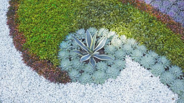 Beet mit kies gestalten  Hingucker im Garten: Kiesbeete selbst gestalten | Garten / Blumen ...