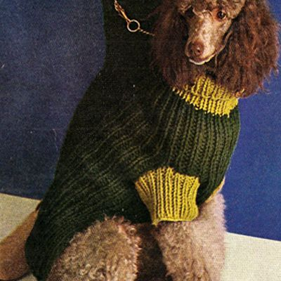 Free+Knitting+Patterns+Dog+Sweaters | turtleneck sweater dress knit pattern free knitting pattern ribbed ...