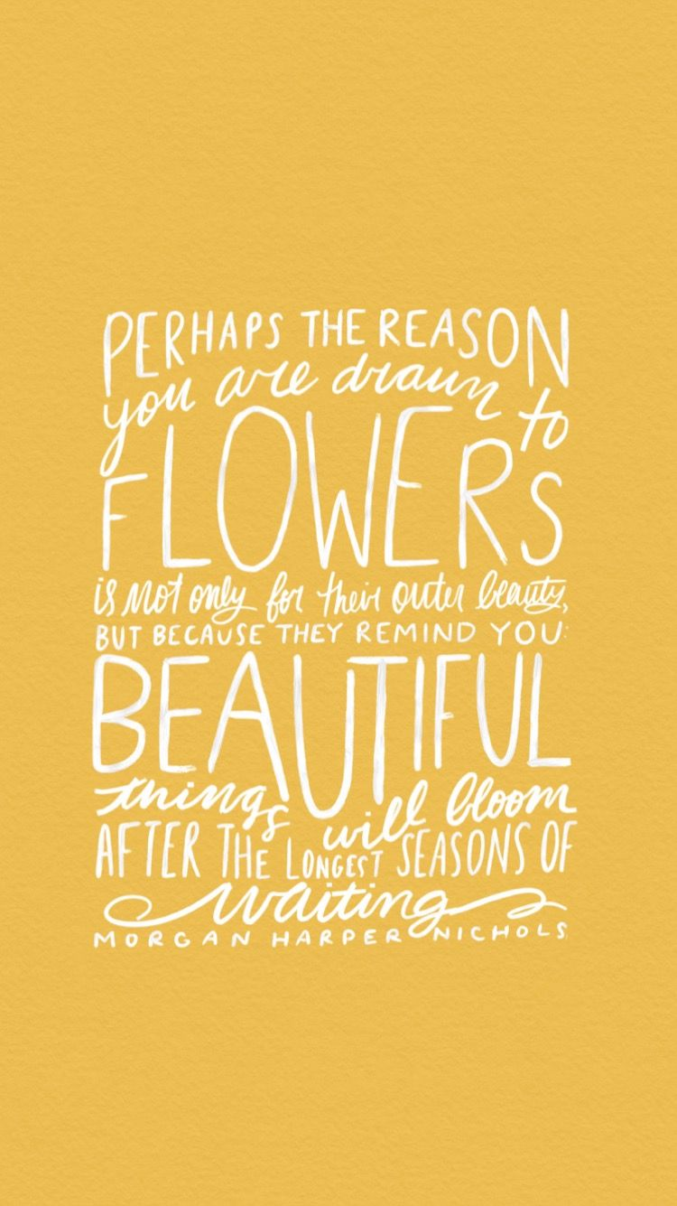Perhaps The Reason You Are Drawn To Flowers Words Quotes Inspirational Quotes Words