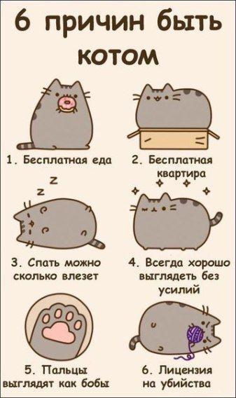 10 Risunki Dlya Srisovki Legkie Karandashom Dlya Nachinayushih Ya Lyublyu