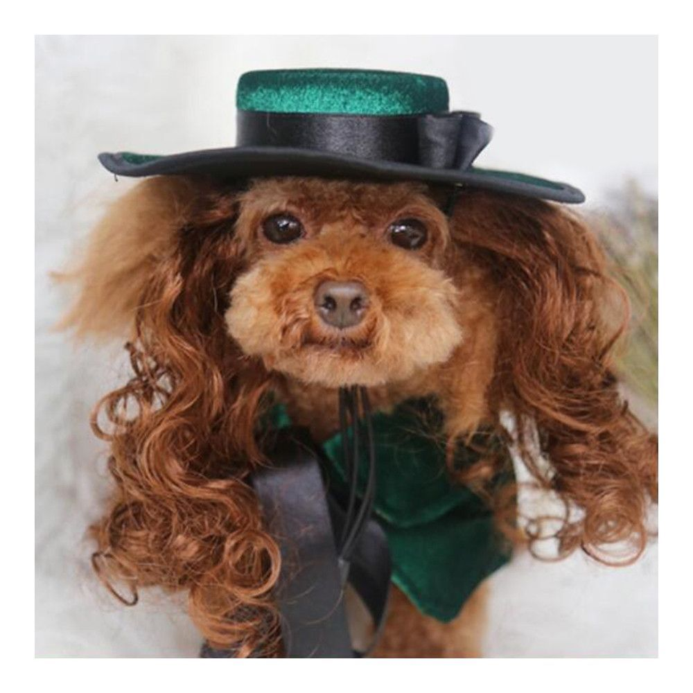 398e85c6e2a Pet Dog Clothes Cloak Wig Hat Suit PF39 green S