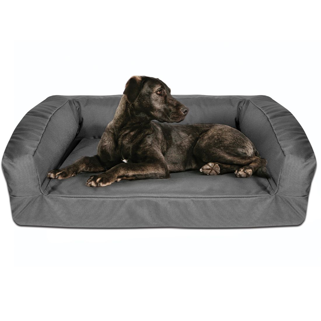 Choose the Kevlar Chew Resistant Bolster Dog Bed for