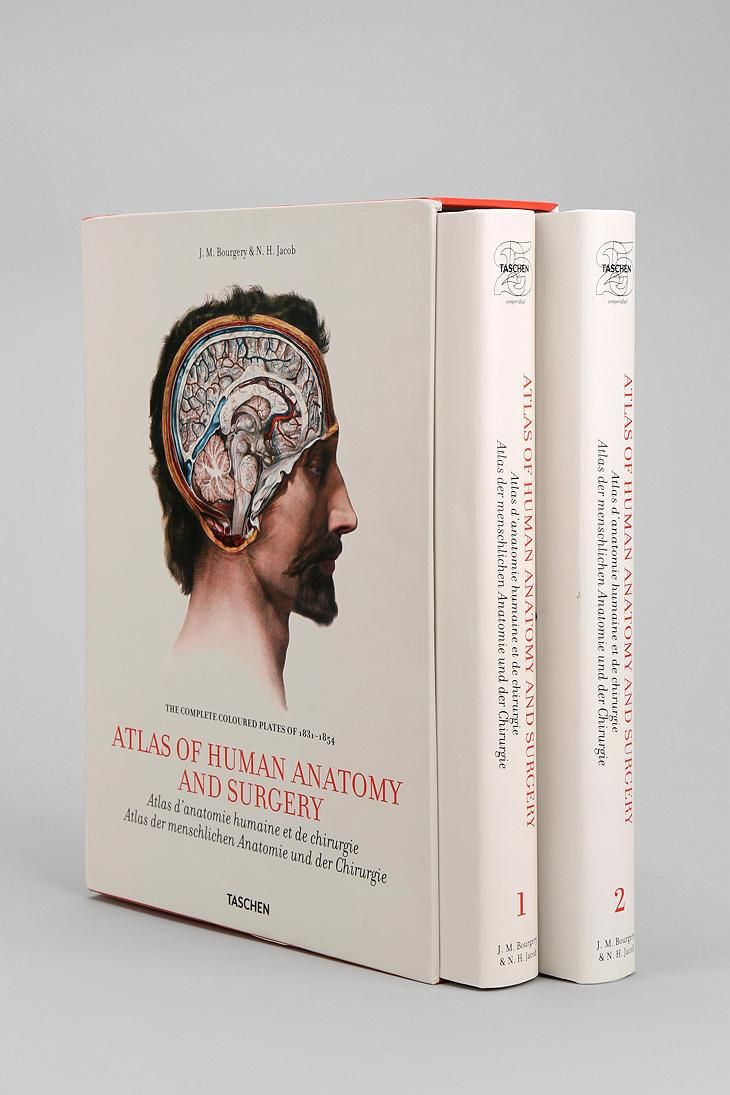 Bourgery: Atlas Of Anatomy By Jean-Marie Le Minor & Henri Sick ...