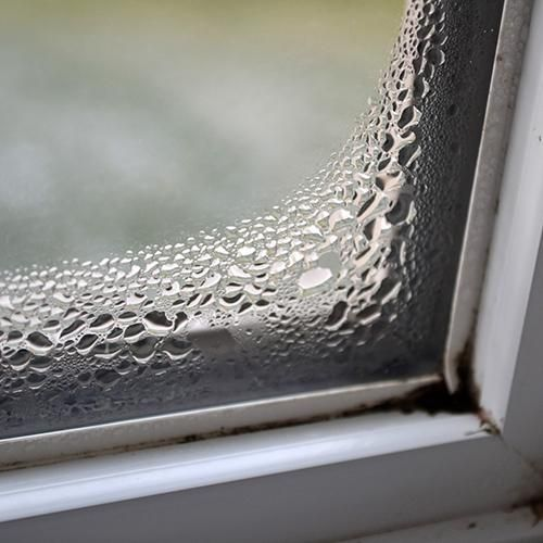 Learn About Condensation Westeck Windows And Doors Molding House Mold Condensation