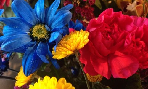 Colorful Flowers – Sunday's Daily Jigsaw Puzzle