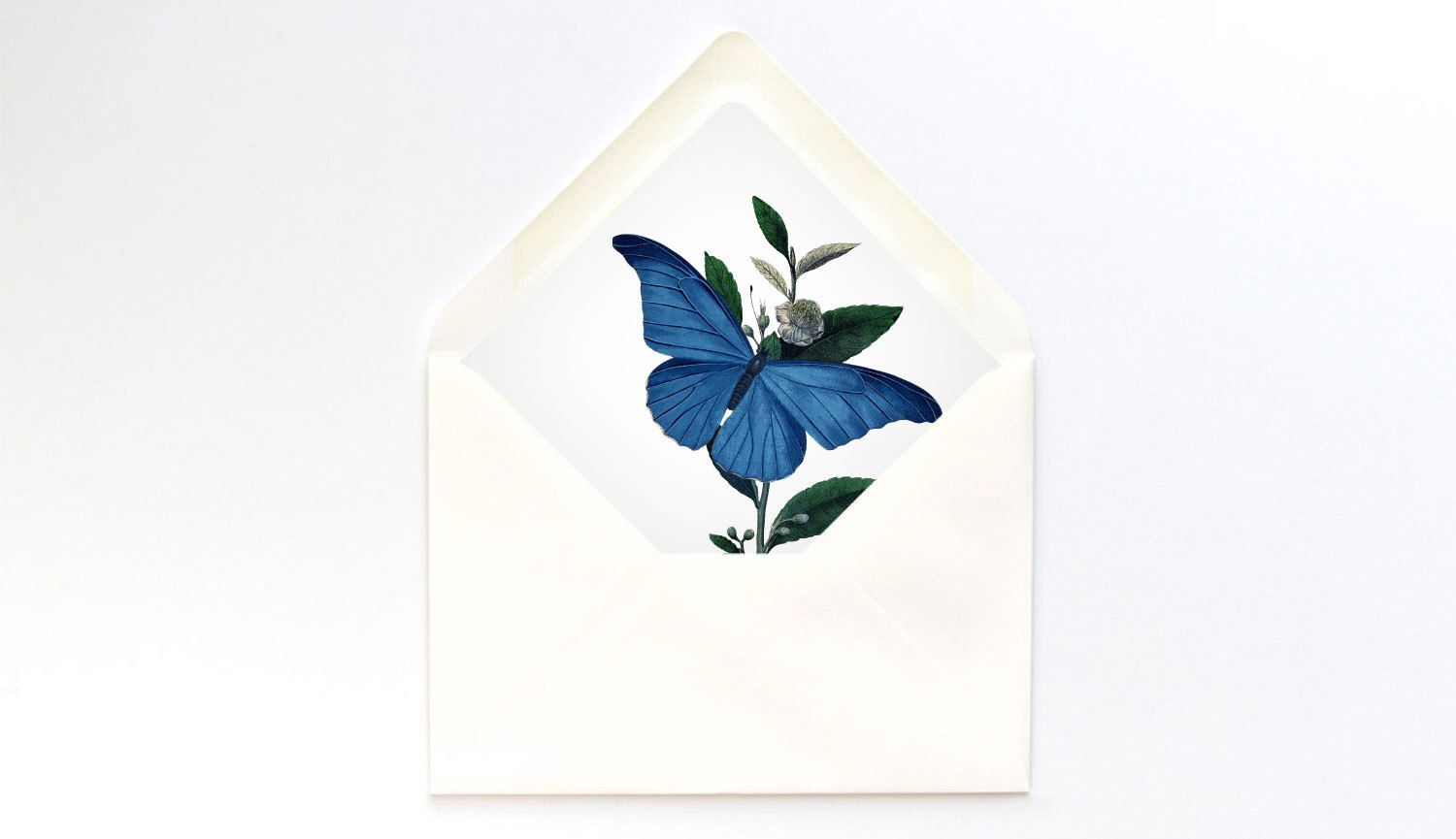 A7 Envelope Liner Template Blue Butterfly Euro Flap Diy
