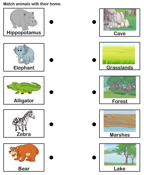 Pin On Activity Kids Animals worksheets word pic matching