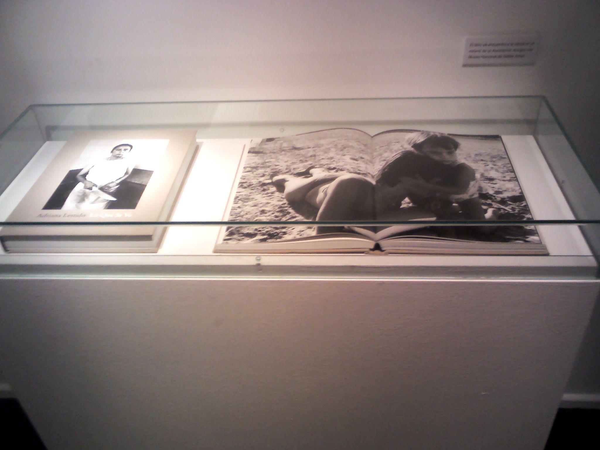 Un libro en del Museo de Bellas Artes