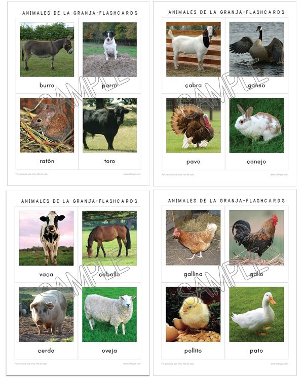 Farm Flashcards In English And Spanish To Download The Incredibles Spanish Summer School