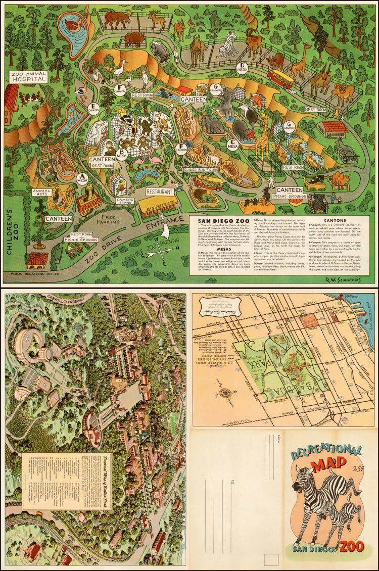 Vintage Infodesign San Diego Zoo - San diego zoo map