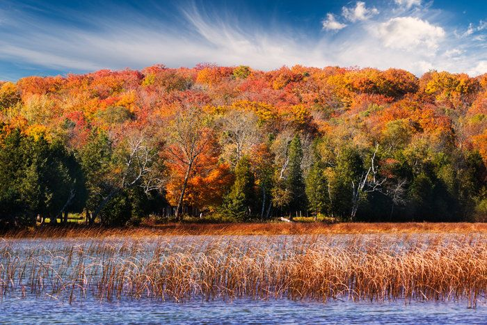 Door County in autumn lets you take in some of the best fall colors in the midwest enjoy freshly harvested food farmers markets and more. & Kangaroo Lake   I Love Fall!   Pinterest   Door county Autumn and Lakes