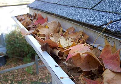 Gutter Cleaning Ballina And Lennox Head Cleaning Gutters Cleaning Fall Clean Up