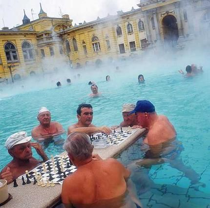 Playing chess at the Széchenyi Baths in Budapest, Hungary. | Travels ...