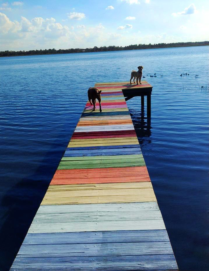 Real Docks Come In Rainbow Colors Reminds Me Of Summers Minnesota