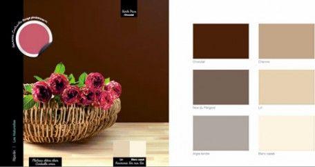 9 ambiances couleurs pour savoir utiliser un nuancier peinture salon chocolat decoration. Black Bedroom Furniture Sets. Home Design Ideas