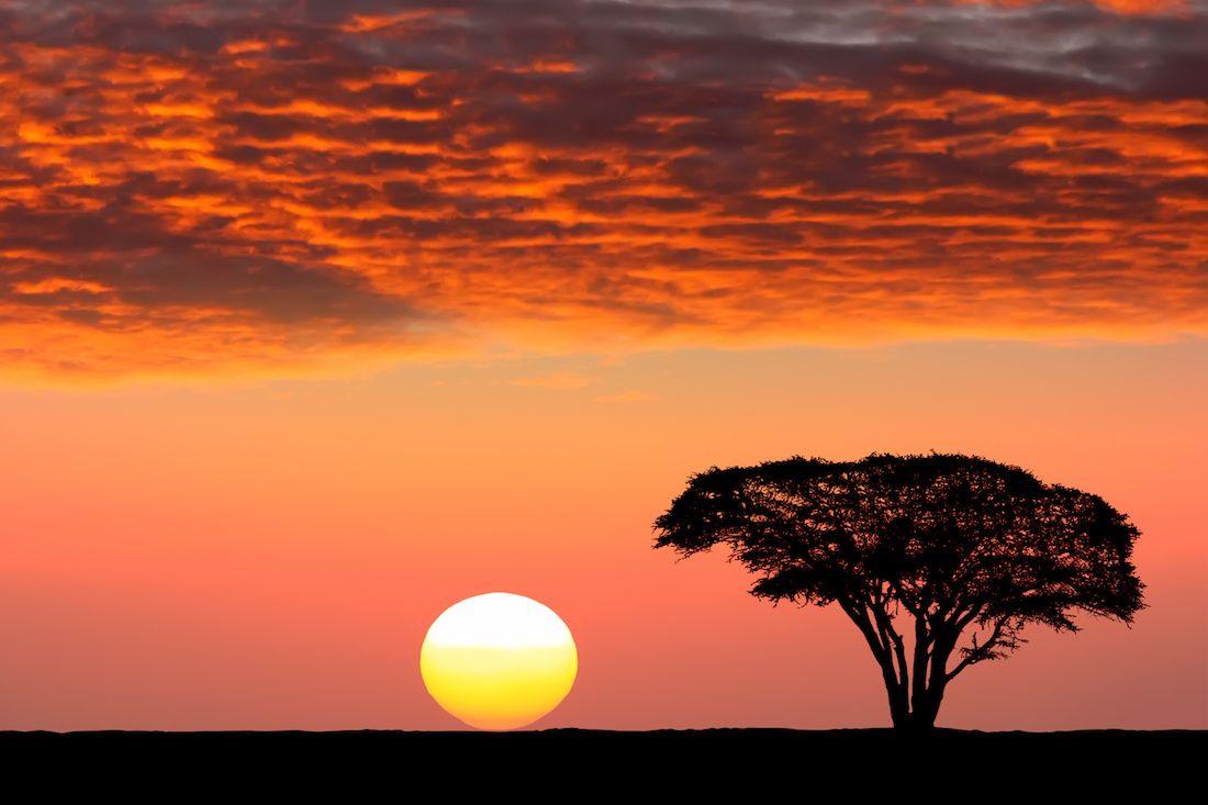 le parc national du serengeti en tanzanie 20 lieux o observer un coucher de soleil. Black Bedroom Furniture Sets. Home Design Ideas