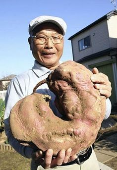 A South Korean website has revealed photos of mutant vegetables from Japan. They say it happened because of the Fukushima nuclear disaster. ...