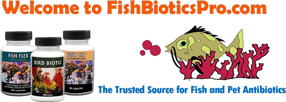 Vet drugs for human consumption (if SHTF) fish flox=cipro