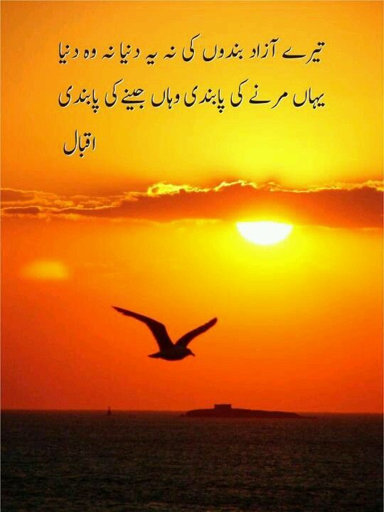 freedom is blessing in urdu Urdu language is called a treasure of sweet and jingling words that are always a treat to teh ears including the number beautiful words, urdu language is also known for it's ever-attractive izaafat/bandish(connecting two or more words to create a single and complete meaning.