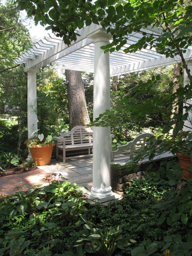 quelles plantes pour une pergola pergola plantes et art des jardins. Black Bedroom Furniture Sets. Home Design Ideas