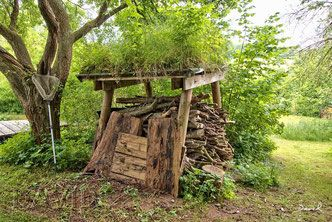 Totholz Reizvoll In Szene Gesetzt Naturgarten Dachbegrunung Widlife Garden Green Roofing Naturgarten Garten Naturnaher Garten