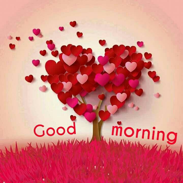 Wax Deluxe   Sevgililer Gününüz Kutlu Ve Mutlu Olsun Wir Wünschen Euch  Einen Wunderschönen Valentinstag We Wish You A Happy Velentineu0027s Day