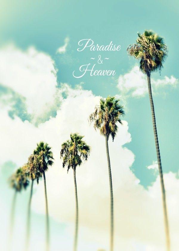 Paradise and Heaven II #metalprint #metalart #art #displate #photography #typography #paradise #heaven #palmtrees #blue #sky #coastal #coast