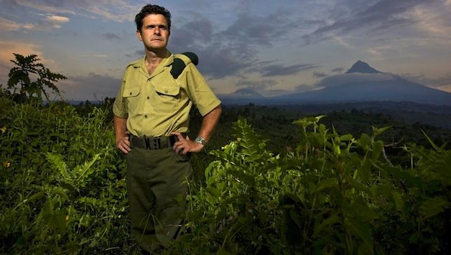 A new film about Africa s embattled Virunga National Park debuts just days after the parks director was shot by gunmen.  Virunga National Park is an amazing, irreplaceable place. Nearly 2 million acres of forests, swamps, savannas and snowfields sprawl over ancient mountains and active volcanoes, teeming with iconic wildlife like chimpanzees, lowland gorillas and about 25 percent of Earth's wild mountain gorillas.