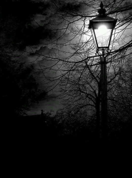 Scary street found in midnight nightmares. | Best part of ...
