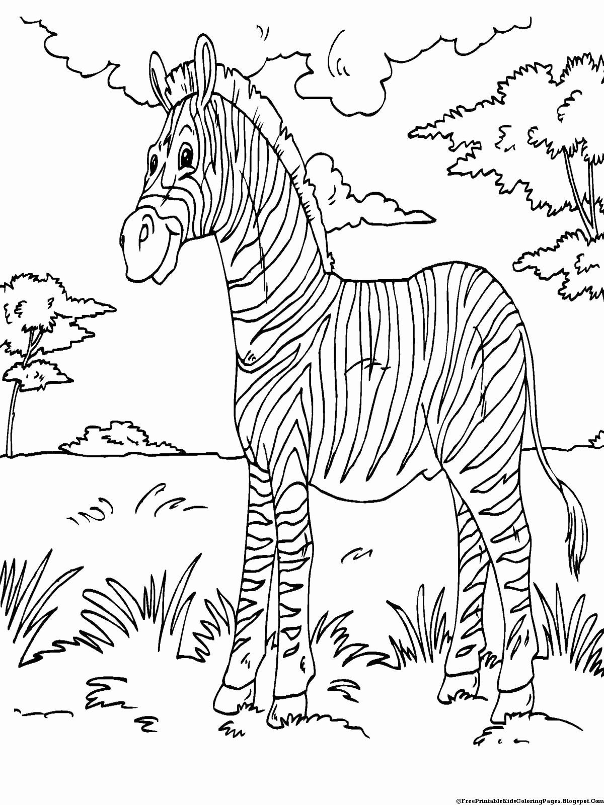 Printable Animal Coloring Sheets Beautiful Zebra Coloring Pages Zebra Warna Binatang