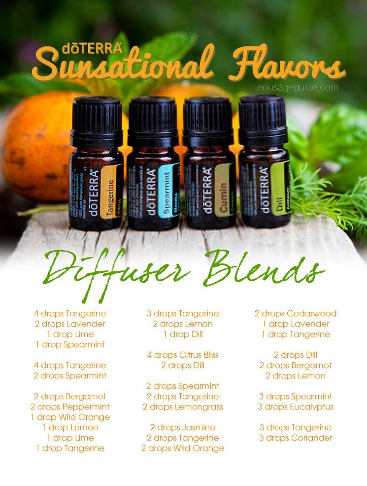Sunsational Flavors Diffuser Blends & Recipe eBook ...
