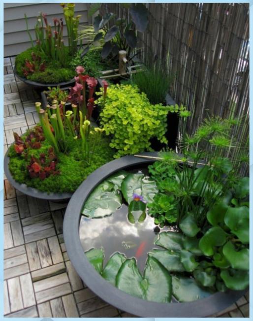 Photo of 10 idee Zen Garden Patio, incredibile e anche Gorgeo – DIY Garden # anche …