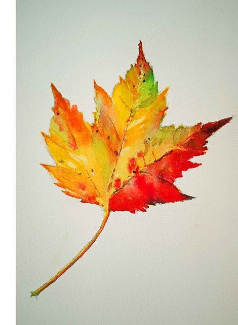 Watercolor Leaves | Leaves, Tattoo and Watercolor