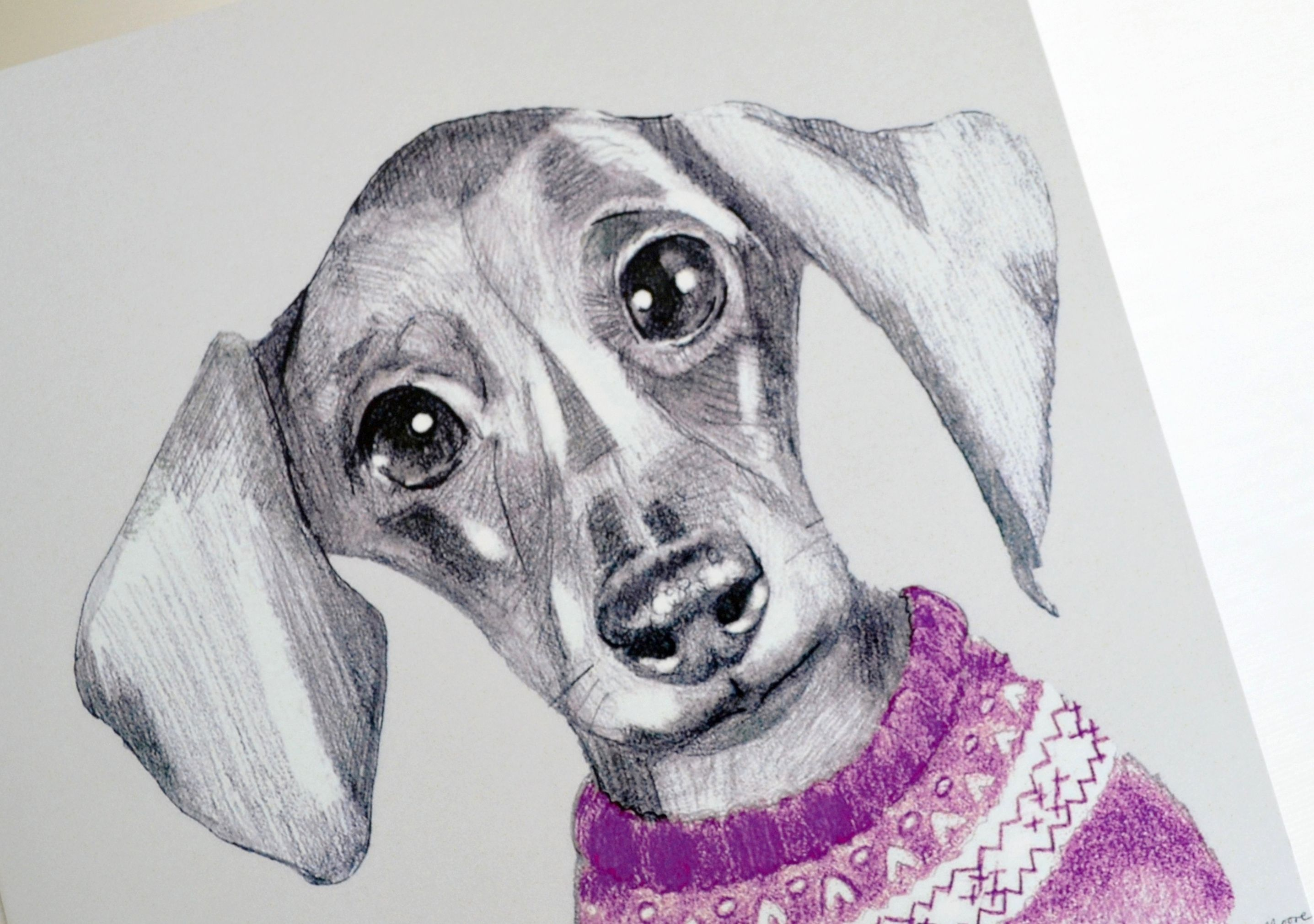 New Darcy The Dachshund Greetings Cards Have Arrived Animal Art