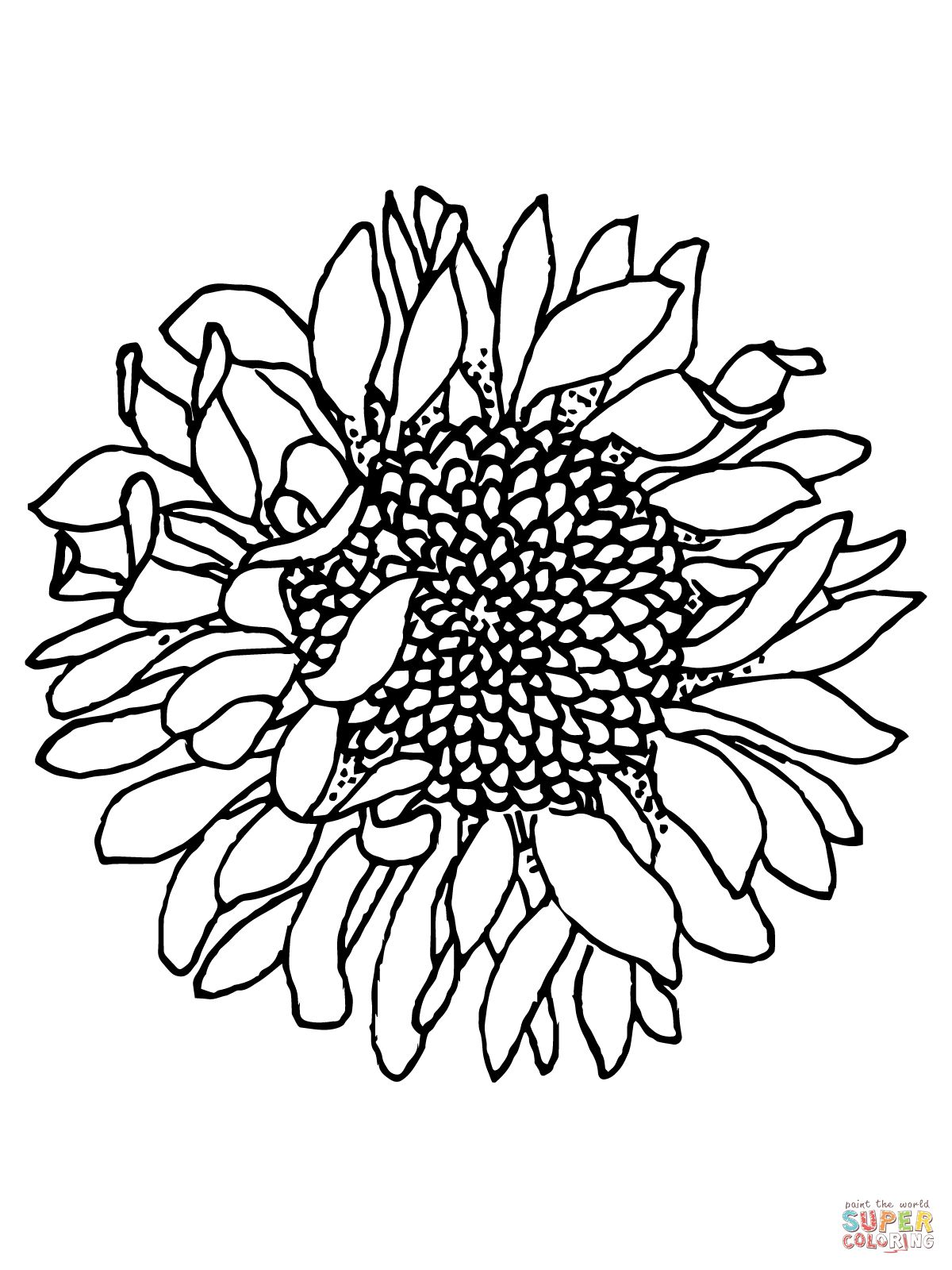 Head of Sunflower coloring page | SuperColoring.com | drawing ...