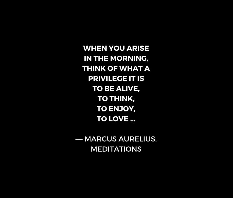 Stoic Wisdom Quotes Marcus Aurelius Meditations What A Privilege It Is To Be Alive Redbubble Stoic Stoicism Stoicism Quotes Wisdom Quotes Stoic Quotes