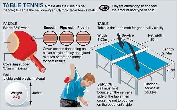basic table tennis  pingpong  tabletennisplayer  sports   table ... bd375fbf1e92