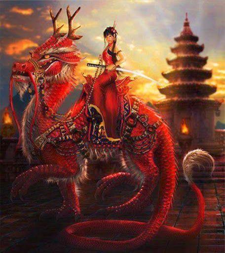 dragões - Felipe flavio sendon - Álbuns da web do Picasa