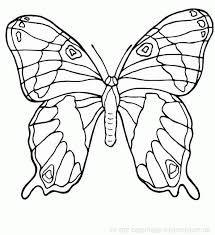 Vysledek Obrazku Pro Motyl Kresleny Motyli Butterfly Coloring