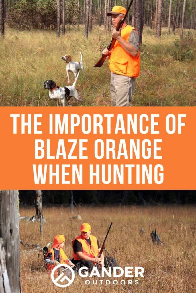 The Importance of Blaze Orange When Hunting Hunting