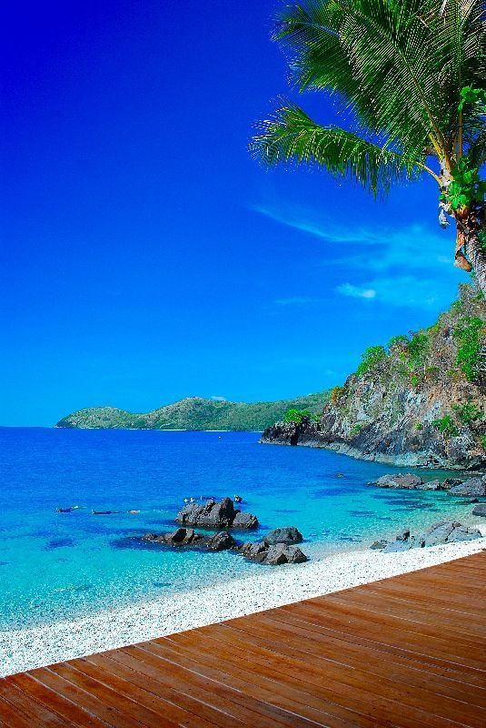 Daydream Island Australia Places To Travel Travel Spot Places To Visit