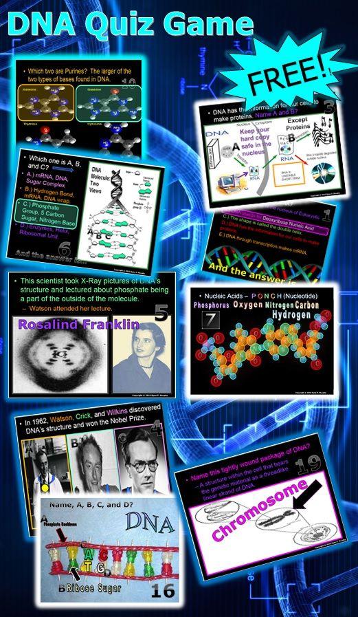DNA Quiz Game Dna quiz, Fun classroom activities, Dna