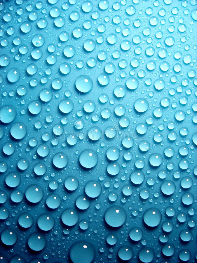 Water Drops On Leaf Detail Ad Drops Water Detail Leaf Ad Water Drop On Leaf Light Blue Aesthetic Water Drops