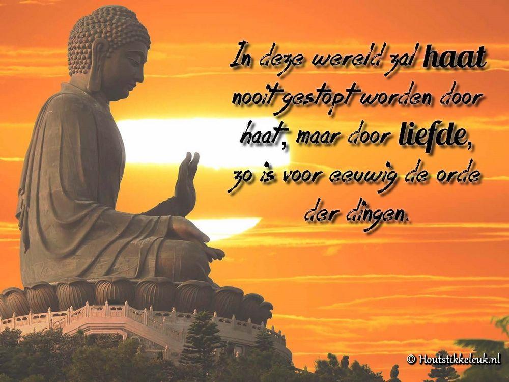 Citaten Boeddha : Boeddha spreuken zen