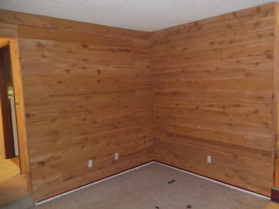 Wow It S Coming Along Cedar Walls Country Style Living Room