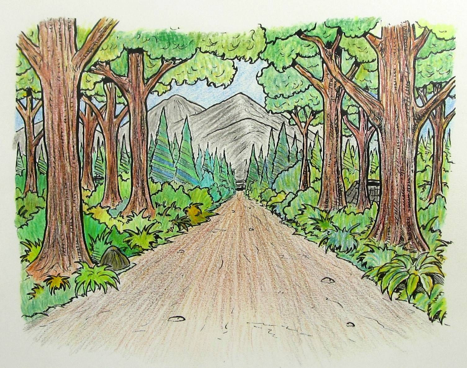 Forest pathway in colored pencil | Custom Coloring Pages | Pinterest ...