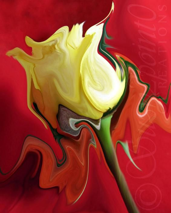 """The Matador"" from Suzy2 0 Floral Digital Paintings macro floral rose yellow "" New Design - Cool orange flower painting Style"