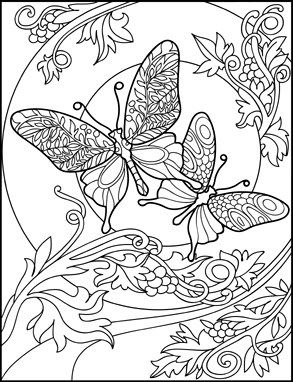 Butterflies Coloring Book for Adults by Amanda Neel ...